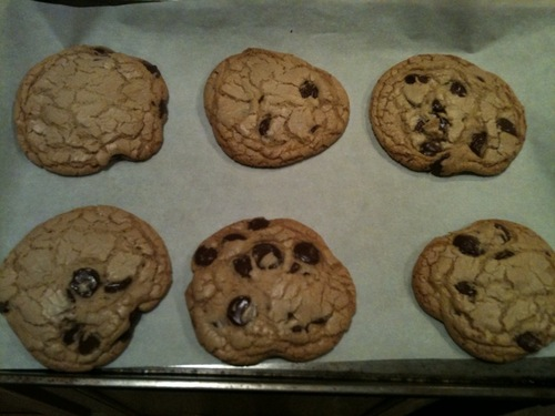 Can't wait much longer... must eat... cookie...